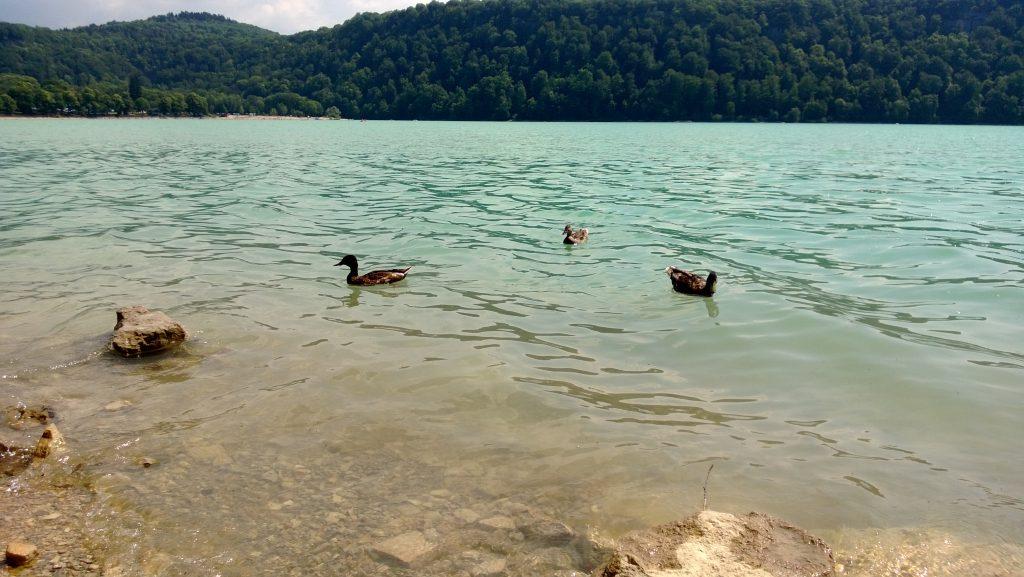 Lac de Cahlain, Doucier, plage naturiste, naturisme dans lejura